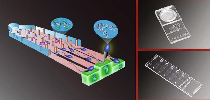 Mikrofluidní čip